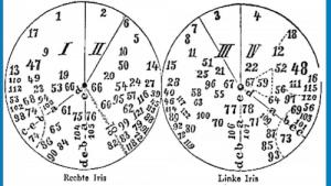Geschichte der Augendiagnose / Iridologietafel
